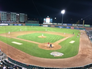 New Hampshire Fisher Cats!